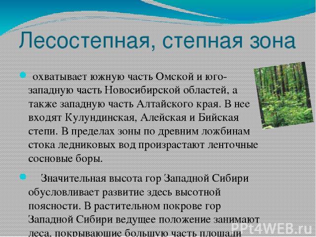Лесостепная, степная зона охватывает южную часть Омской и юго-западную часть Новосибирской областей, а также западную часть Алтайского края. В нее входят Кулундинская, Алейская и Бийская степи. В пределах зоны по древним ложбинам стока ледниковых во…
