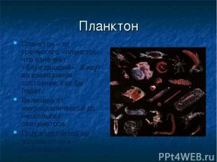 Планктон Планктон – от греческого «планктос», что означает «блуждающий». Живут в