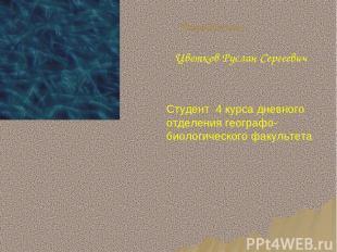 Разработчик: Цветков Руслан Сергеевич Студент 4 курса дневного отделения географ