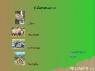 Слоны Бегемоты Носороги Жирафы Содержание: Литература Выход