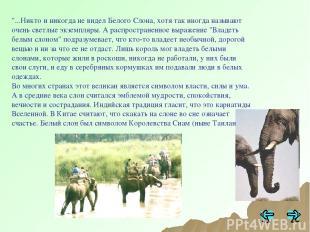 """""""...Никто и никогда не видел Белого Слона, хотя так иногда называют очень светлы"""