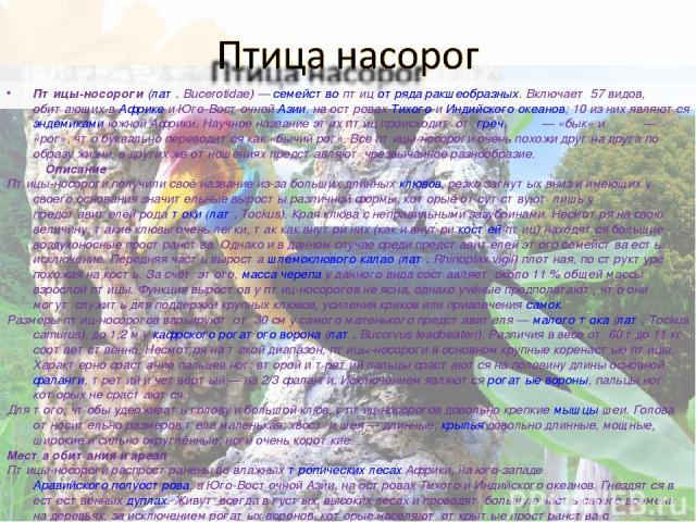 Пти цы-носоро ги (лат.Bucerotidae)— семейство птиц отряда ракшеобразных. Включает 57 видов, обитающих в Африке и Юго-Восточной Азии, на островах Тихого и Индийского океанов; 10 из них являются эндемиками южной Африки. Научное название этих птиц пр…