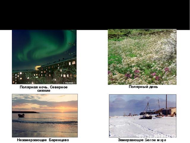 Полярная ночь. Северное сияние Незамерзающее Баренцево море Полярный день Замерзающее Белое море Северный полярный круг