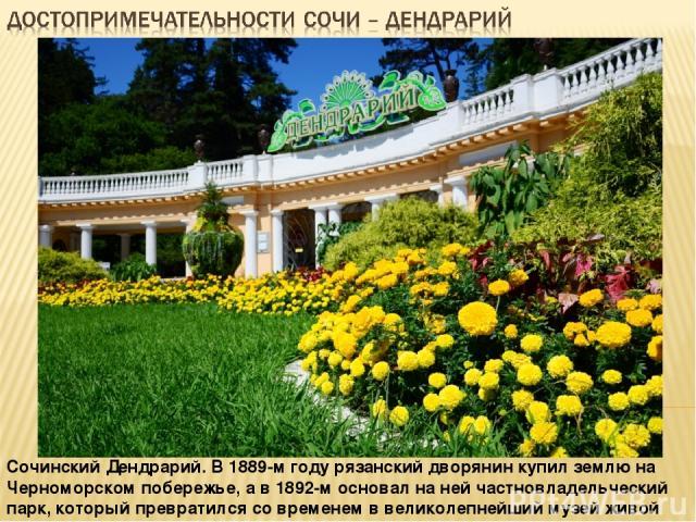 Сочинский Дендрарий. В 1889-м году рязанский дворянин купил землю на Черноморском побережье, а в 1892-м основал на ней частновладельческий парк, который превратился со временем в великолепнейший музей живой природы.