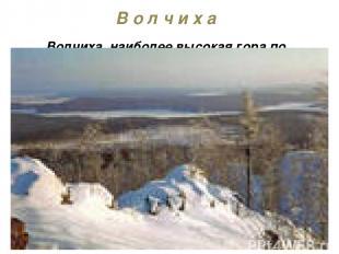 В о л ч и х а Волчиха, наиболее высокая гора по близости Екатеринбурга (высота 5