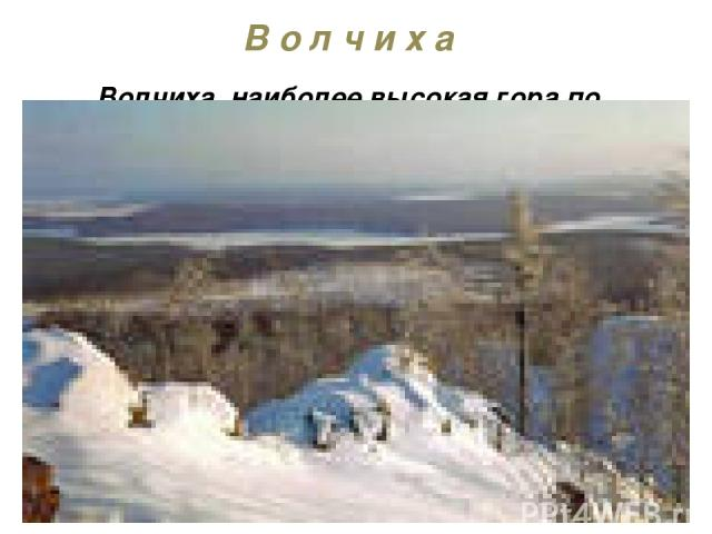 В о л ч и х а Волчиха, наиболее высокая гора по близости Екатеринбурга (высота 526м). Гора расположена около г. Первоуральска и г. Ревда. Скалистая вершина Волчихи возвышается над лесом. В сторону Ревды и Первоуарльска, в безветренную погоду, долина…