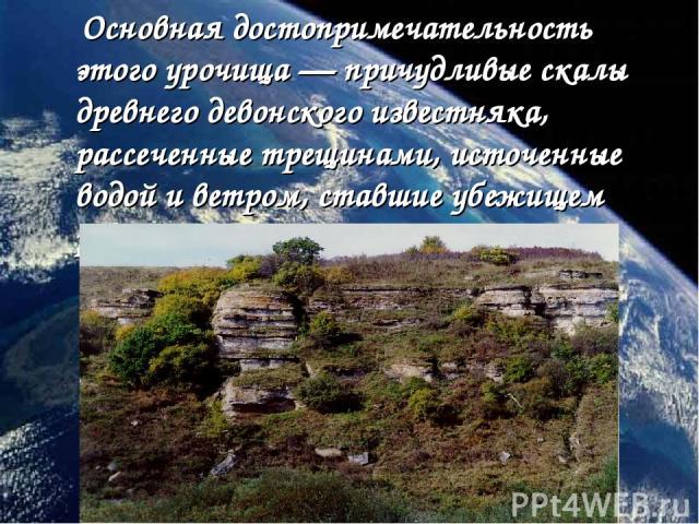 Основная достопримечательность этого урочища—причудливые скалы древнего девонского известняка, рассеченные трещинами, источенные водой и ветром, ставшие убежищем редких растений.