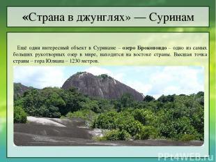 Ещё один интересный объект в Суринаме –озеро Брокопондо– одно из самых больших