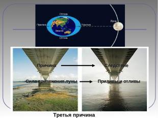 Третья причина Причина Следствие Сила притяжения луны Приливы и отливы