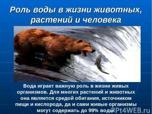 Роль воды в жизни животных, растений и человека Вода играет важную роль в жизни