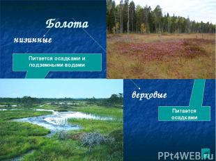 Влияние человека на водные ресурсы. Использование воды Водопользование 1.Рыбное