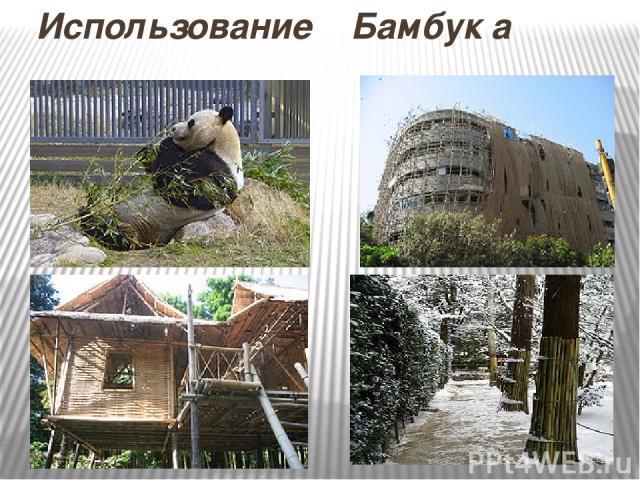 Использование Бамбук а