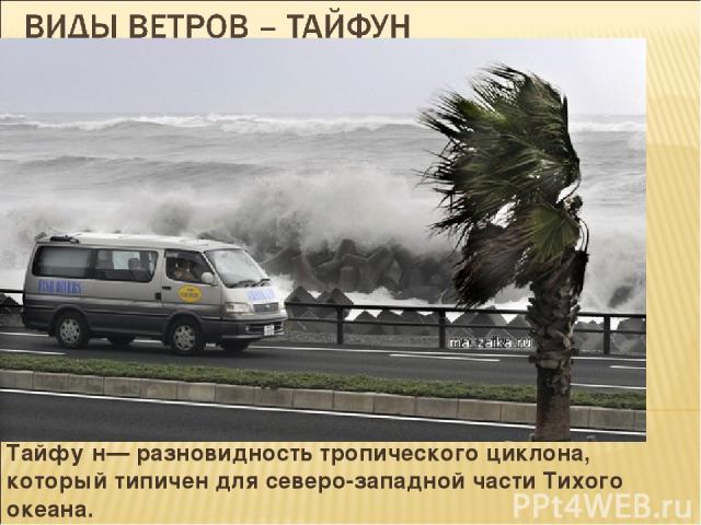 Тайфу н— разновидность тропического циклона, который типичен для северо-западной части Тихого океана.
