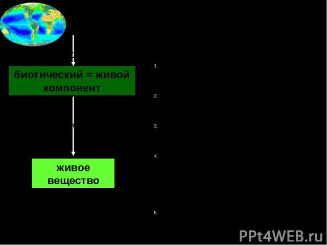 2в. Состав биосферы биотический = живой компонент организмы живое вещество тела живой природы живое вещество Свойства живого вещества: Присутствует только в биосфере Едино по строению и происхождению Способно к самоусложнению (эволюции) Процессы, в …