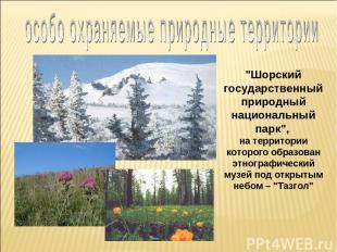 """""""Шорский государственный природный национальный парк"""", на территории которого об"""