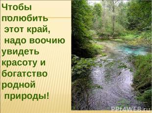 Чтобы полюбить этот край, надо воочию увидеть красоту и богатство родной природы