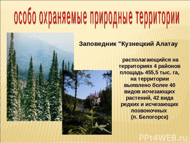 располагающийся на территориях 4 районов площадь 455,5 тыс. га, на территории выявлено более 40 видов исчезающих растений, 42 вида редких и исчезающих позвоночных (п. Белогорск) Заповедник