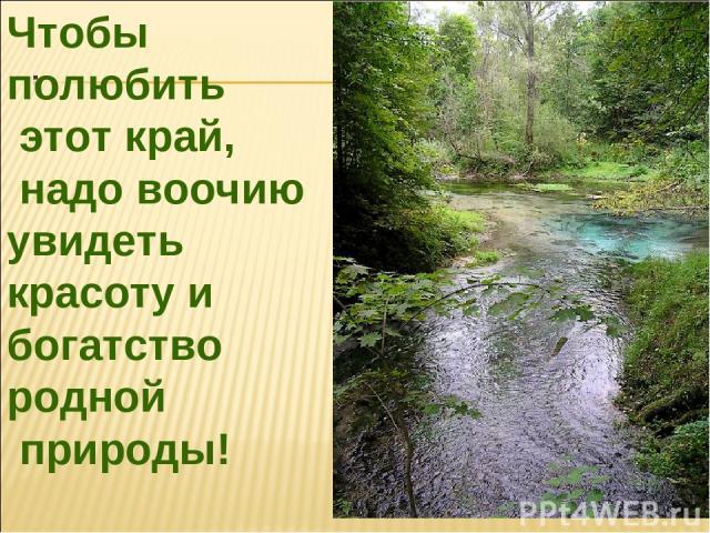 Чтобы полюбить этот край, надо воочию увидеть красоту и богатство родной природы!