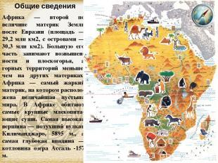 Африка — второй по величине материк Земли после Евразии (площадь — 29,2 млн км2,