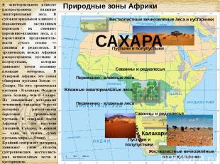Природные зоны Африки В экваториальном климате распространены влажные экваториал