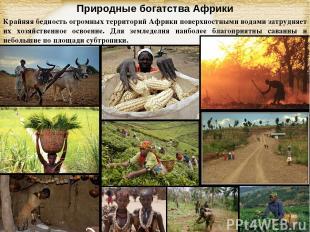 Природные богатства Африки Крайняя бедность огромных территорий Африки поверхнос