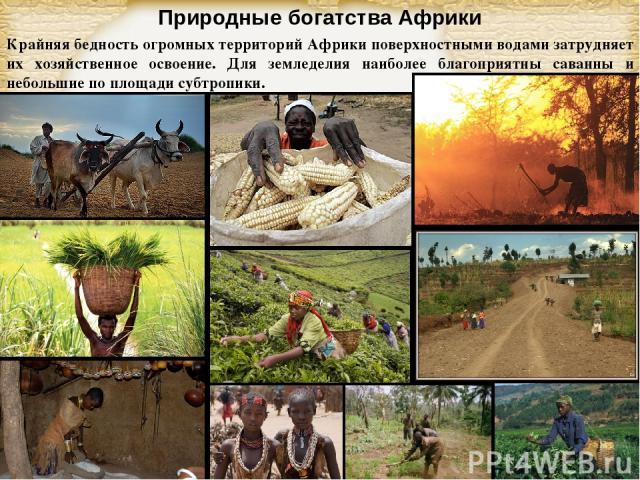 Природные богатства Африки Крайняя бедность огромных территорий Африки поверхностными водами затрудняет их хозяйственное освоение. Для земледелия наиболее благоприятны саванны и небольшие по площади субтропики. Page