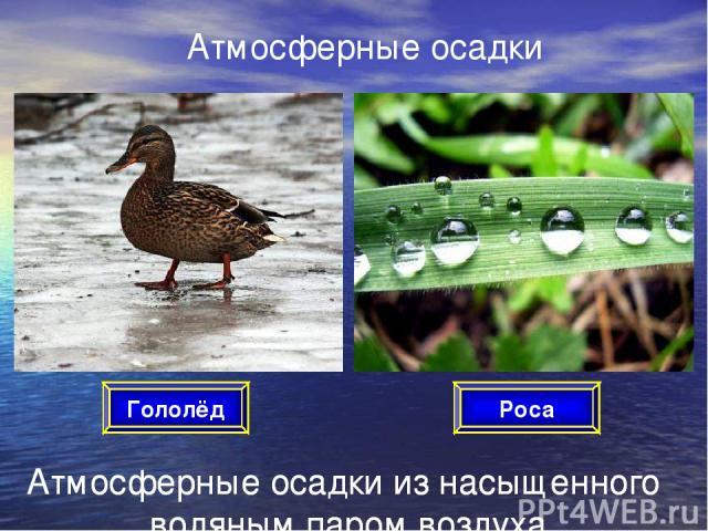 Атмосферные осадки Атмосферные осадки из насыщенного водяным паром воздуха Роса Гололёд Атмосферные осадки из насыщенного водяным паром воздуха