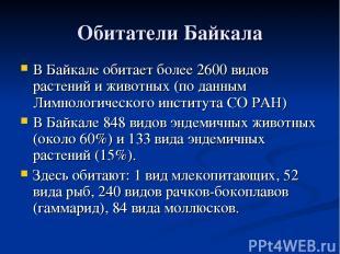 Обитатели Байкала В Байкале обитает более 2600 видов растений и животных (по дан