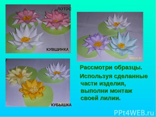 Рассмотри образцы. Используя сделанные части изделия, выполни монтаж своей лилии. КУБЫШКА КУВШИНКА ЛОТОС