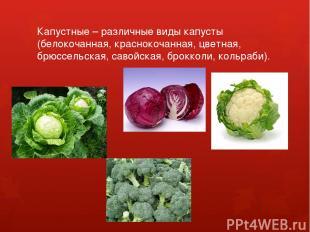 Капустные – различные виды капусты (белокочанная, краснокочанная, цветная, брюсс