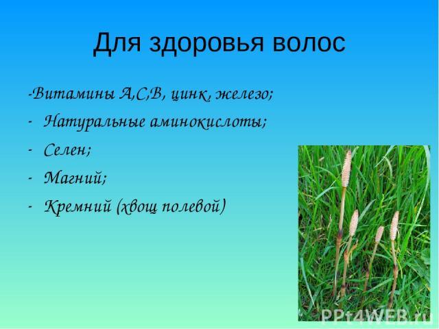 Для здоровья волос -Витамины А,С,В, цинк, железо; Натуральные аминокислоты; Селен; Магний; Кремний (хвощ полевой)