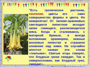 """* """"Есть тропическое растение, скопелия, цветы его - само совершенство формы и цв"""