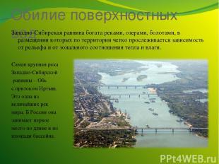 Обилие поверхностных вод Западно-Сибирская равнина богата реками, озерами, болот