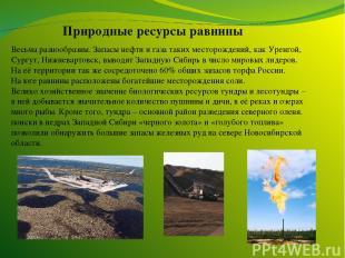 Природные ресурсы равнины Весьма разнообразны. Запасы нефти и газа таких месторо