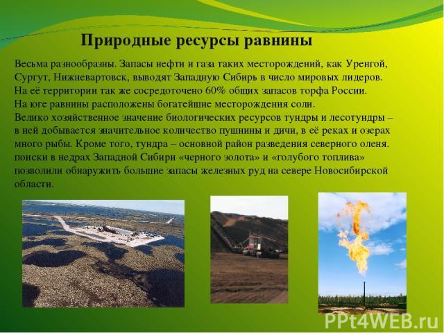 Природные ресурсы равнины Весьма разнообразны. Запасы нефти и газа таких месторождений, как Уренгой, Сургут, Нижневартовск, выводят Западную Сибирь в число мировых лидеров. На её территории так же сосредоточено 60% общих запасов торфа России. На юге…