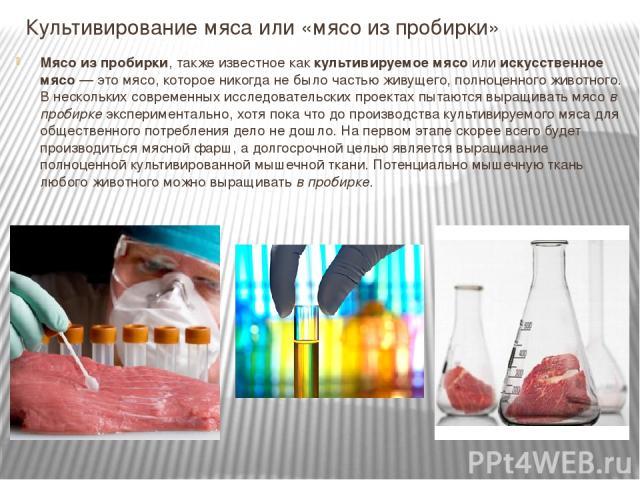 Культивирование мяса или «мясо из пробирки» Мясо из пробирки, также известное каккультивируемое мясоилиискусственное мясо— это мясо, которое никогда не было частью живущего, полноценного животного. В нескольких современных исследовательских прое…