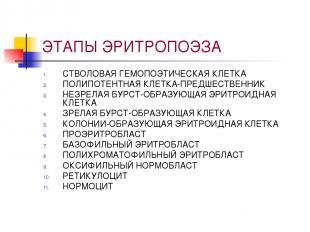 ЭТАПЫ ЭРИТРОПОЭЗА СТВОЛОВАЯ ГЕМОПОЭТИЧЕСКАЯ КЛЕТКА ПОЛИПОТЕНТНАЯ КЛЕТКА-ПРЕДШЕСТ