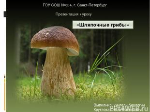ГОУ СОШ №604. г. Санкт-Петербург Презентация к уроку Выполнил: учитель биологии