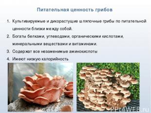 * Питательная ценность грибов Культивируемые и дикорастущие шляпочные грибы по п