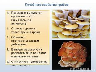 * Лечебные свойства грибов