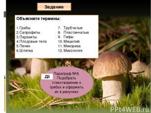 Объясните термины: Грибы Сапрофиты Паразиты Плодовые тела Пенек Шляпка Трубчатые