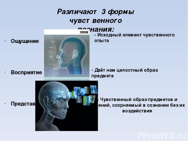 Различают 3 формы чувственного познания: Ощущение Восприятие Представление - Исходный элемент чувственного опыта - Даёт нам целостный образ предмета - Чувственный образ предметов и явлений, сохрняемый в сознании без их воздействия