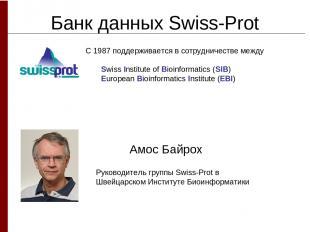 Банк данных Swiss-Prot Амос Байрох Руководитель группы Swiss-Prot в Швейцарском