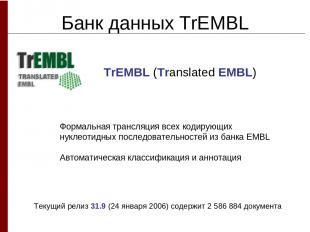Банк данных TrEMBL Формальная трансляция всех кодирующих нуклеотидных последоват