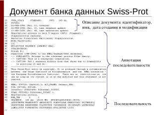 Документ банка данных Swiss-Prot Описание документа: идентификатор, имя, дата со