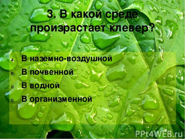 3. В какой среде произрастает клевер? В наземно-воздушной В почвенной В водной В организменной