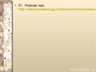 21. Породы кур. http://www.knowbiology.ru/pozvonochnie/kurinye-page16.html
