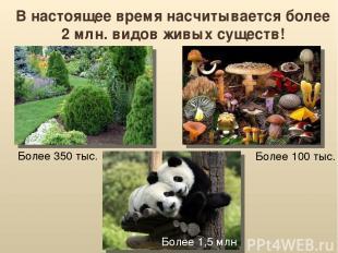 В настоящее время насчитывается более 2 млн. видов живых существ! Более 350 тыс.