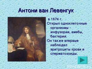 Антони ван Левенгук в 1674 г. Открыл одноклеточные организмы - инфузории, амебы,