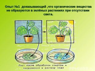 Опыт №1 доказывающий ,что органические вещества не образуются в зелёных растения